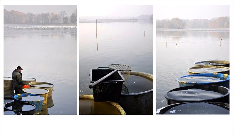 triptych2.jpg