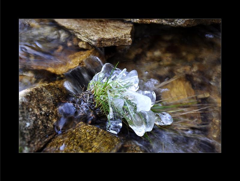 zmrzlici-2.jpg