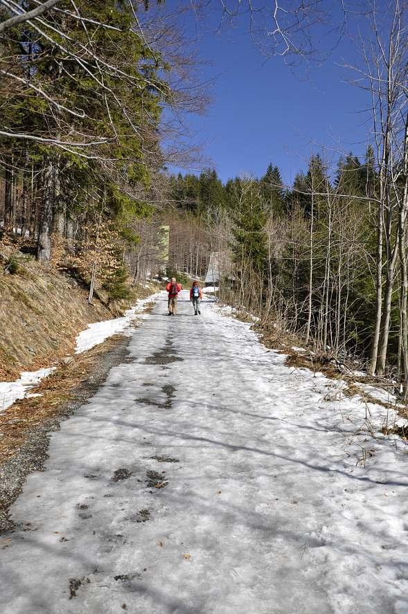 zmrzla-cesta.jpg