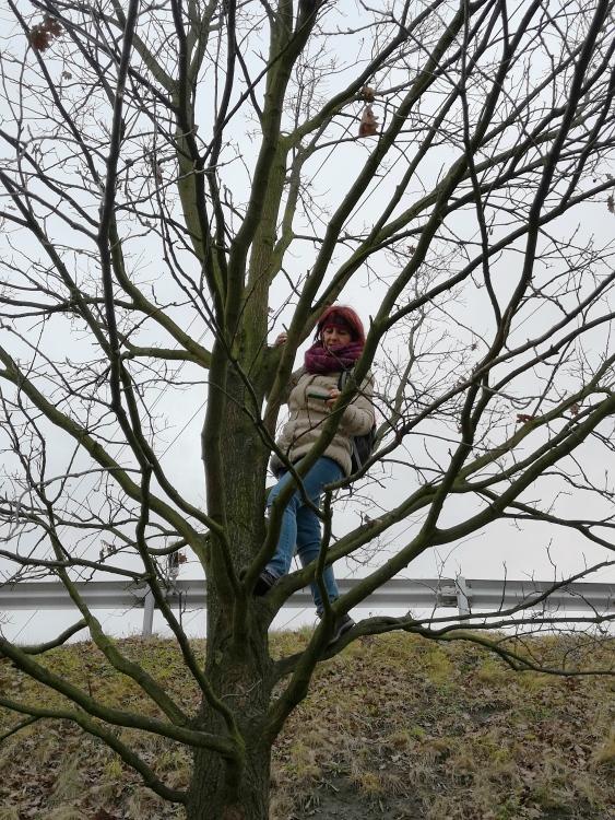 na-strome.jpg