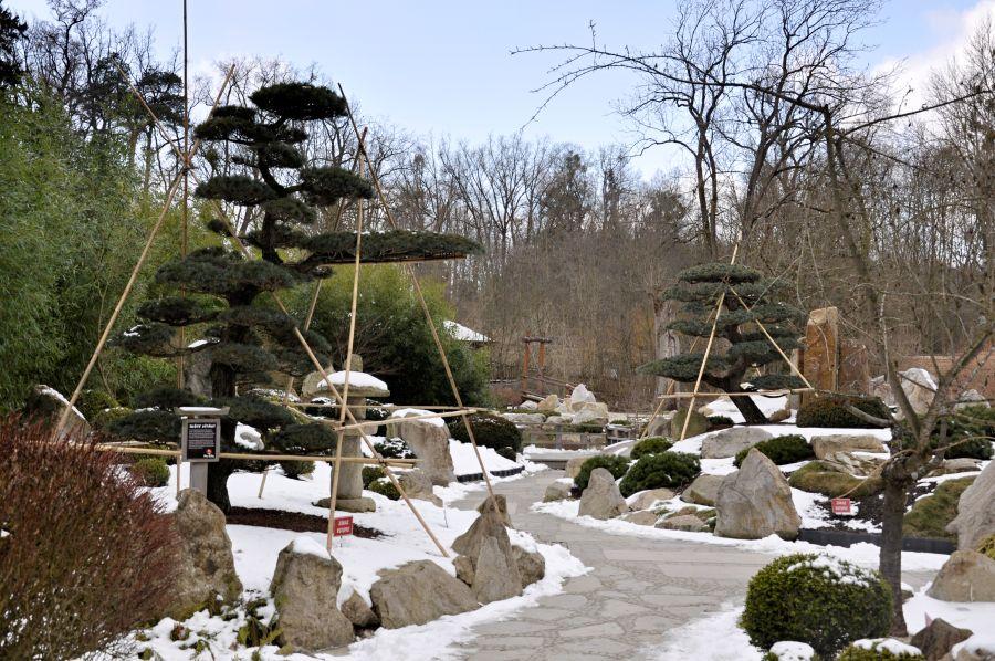 zoo-lesna-26.jpg