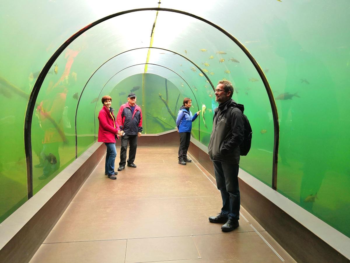v-tunelu-ziva-voda-modra.jpg