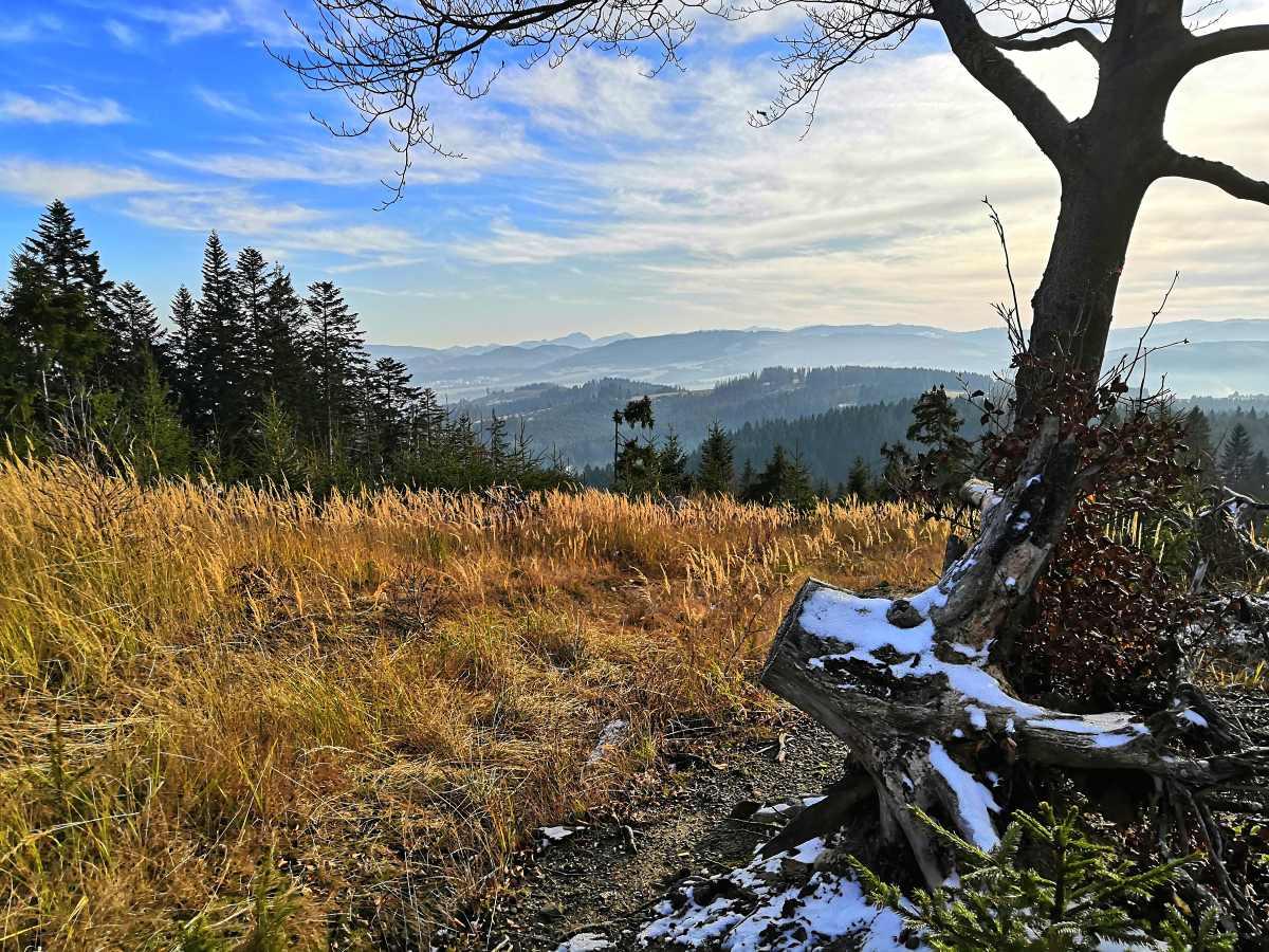 panoramata-2.jpg