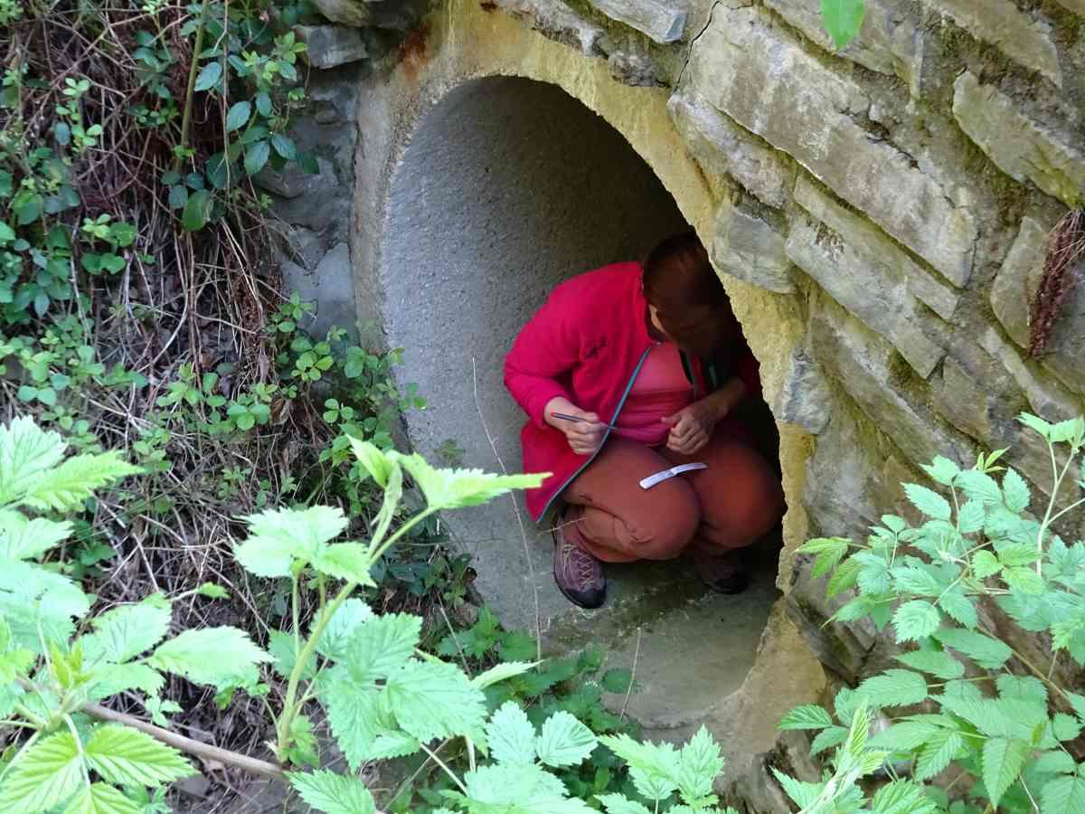 tunelovka.jpg