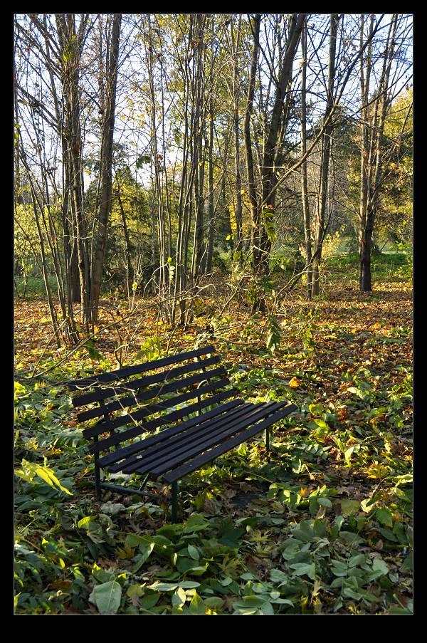 podzimni-posezeni.jpg
