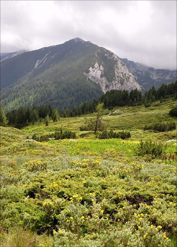 bulharsko0153.jpg