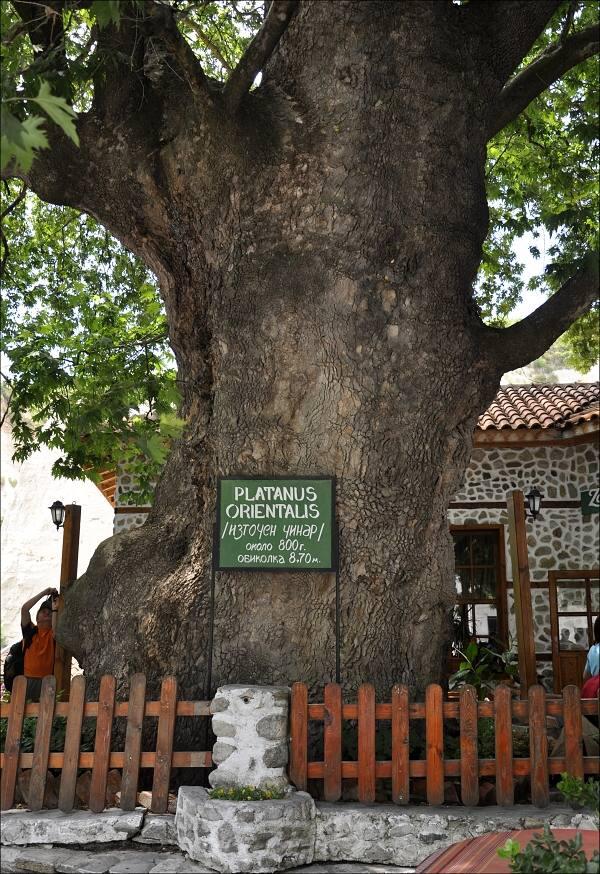 bulharsko0409.jpg
