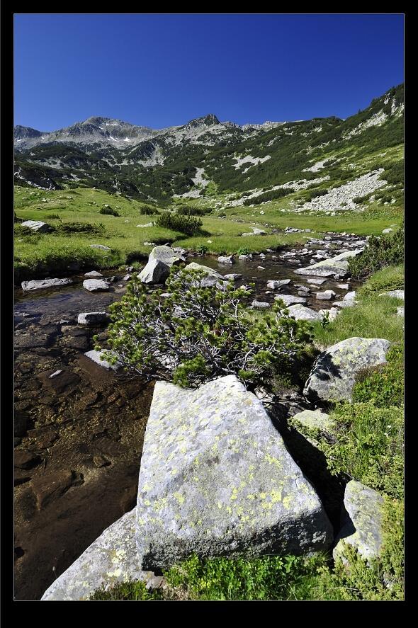 bulharsko0439.jpg