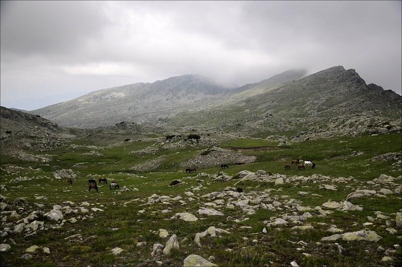 bulharsko0499.jpg