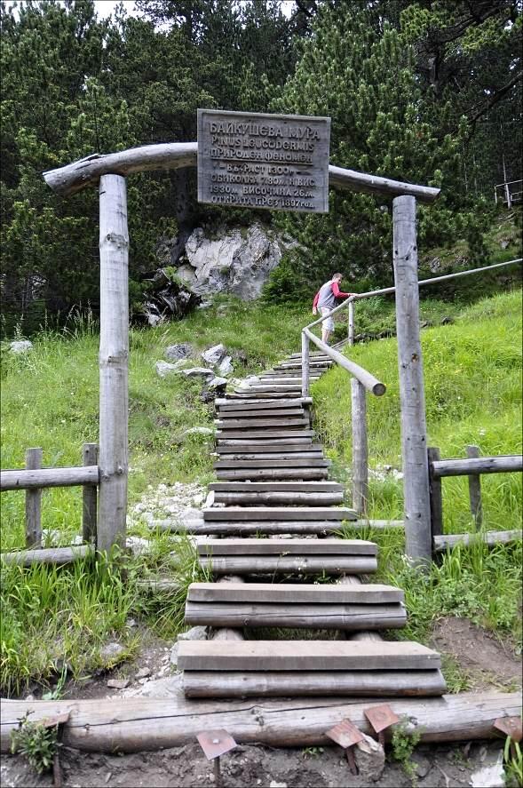 bulharsko0523.jpg