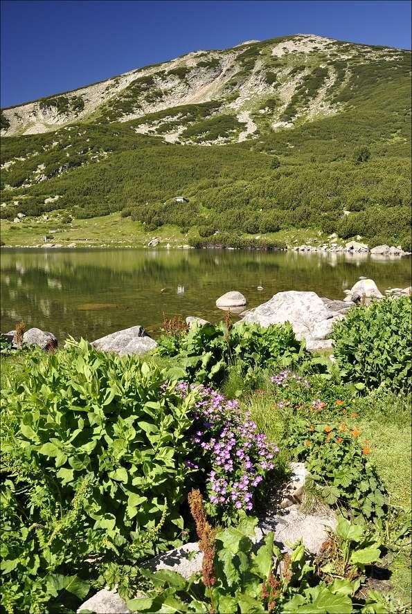 bulharsko0593.jpg