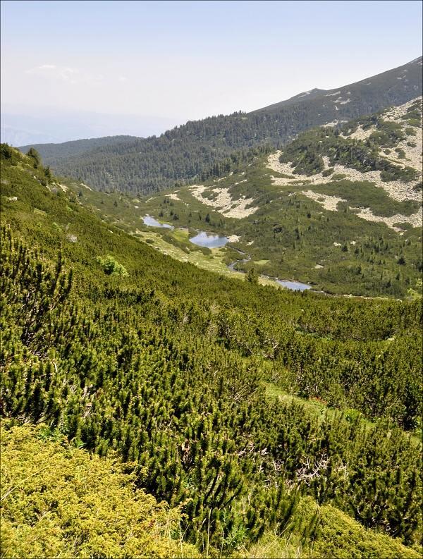 bulharsko0661.jpg