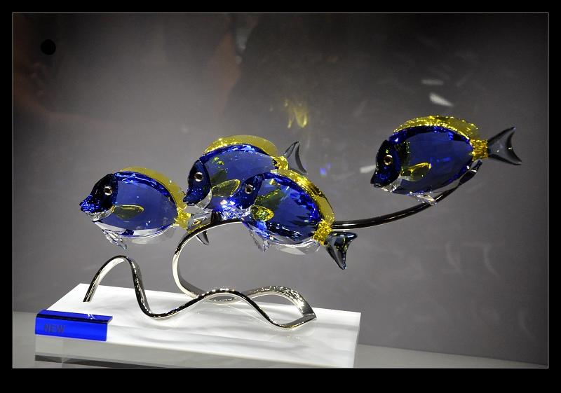 rybicky.jpg