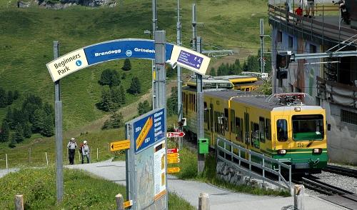 Zubačka z Grindenwaldu