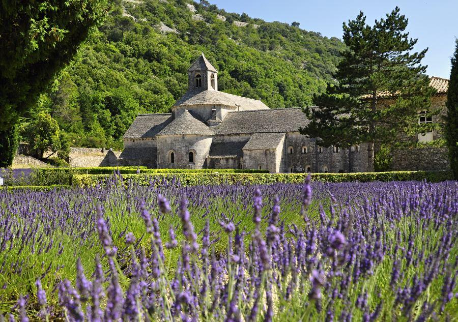 klaster-l-abbaye-de-simangue-_-6.jpg