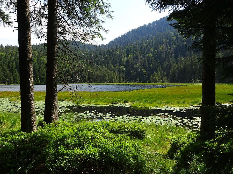 male-javorske-jezero-iii.jpg